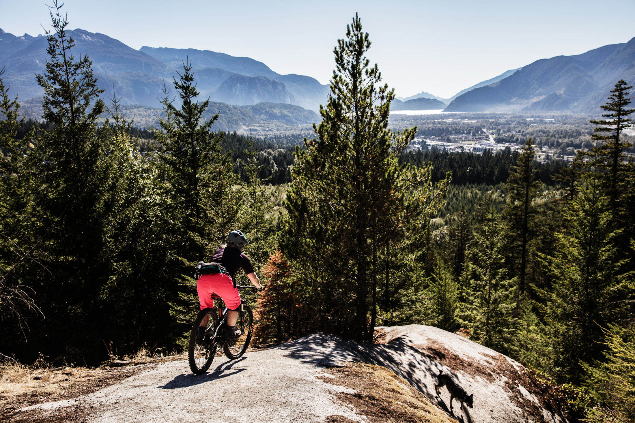 Mountain-Biking-Squamish-Summer-Dog